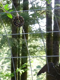 Tied Onto Trellis For Birds_244x326
