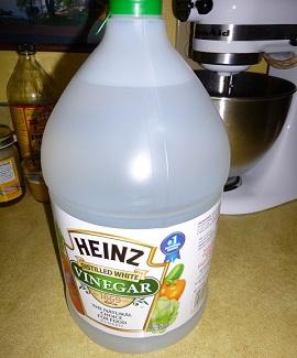 VinegarBottle