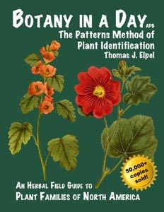 Wild Plants – Two recommended books  & website