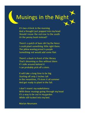 Musings in the Night – Poem