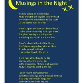 Musings in the Night –Poem