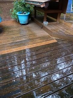 RainOctober2015_325h