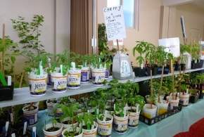 The BIG LIST of PLANTS for the May 20 Plant Sale nowavailable!