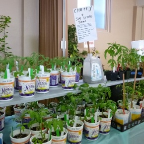 The BIG LIST of PLANTS for the May 20 Plant Sale now available!