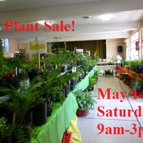Plant Sale SATURDAY, May 14, 9am-3pm!