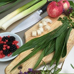 Intro to Urban Foraging – Sep 17, 10am-noon @ Columbia Springs!