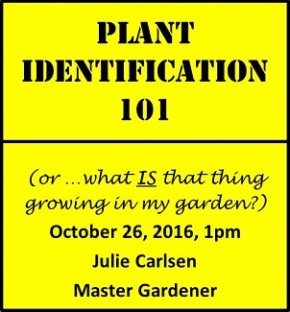 "Oct 26, 1pm ""Plant Identification 101"" by Julie Carlsen, Master Gardener"