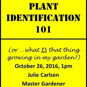 """Oct 26, 1pm """"Plant Identification 101"""" by Julie Carlsen, MasterGardener"""