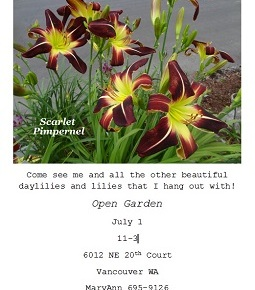 Meet the Scarlet Pimpernel @ Open Garden, July 1, 11am-3pm