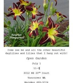 Meet the Scarlet Pimpernel @ Open Garden, July 1,11am-3pm