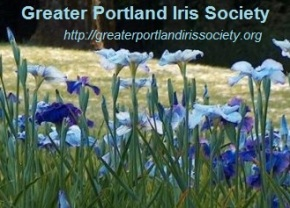 Greater Portland Iris Society Events – Winter to Spring!