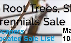 May 5th, 10-3 – Naturescapers' DEEP DISCOUNTS!  $5/trees, $3/shrubs & $1/perennials!