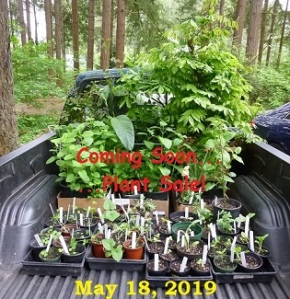 Coming Soon!  Annual Plant Sale – May 18, 2019