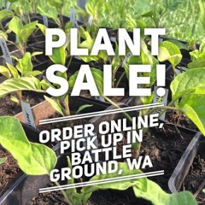 Eve & Erik's Plant Sale – this event has passed