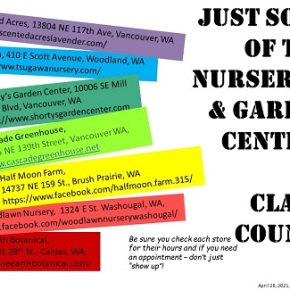Local Nurseries are OPEN for Business!