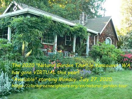 Clarkgreenneighbors_gardenTour_2020_wInfo_325h