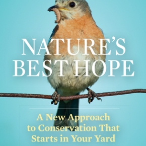 Create native plant ecosystems in your own yard – Doug Tallamy Video